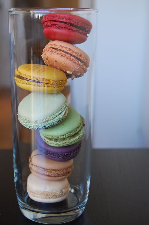 2009.02.08_PauletteMacarons06