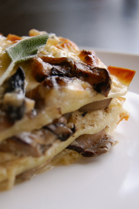 080127_mushroomlasagna_04